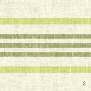 Duni classic szalvéta Raya kiwi 4rtg 40x40cm 6x50db/gyűjtő
