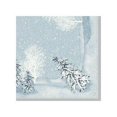 Dunisoft szalvéta Winter mornings 40x40cm 6x60db/gyűjtő