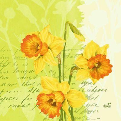 Duni szalvéta Spring flowers 3rtg 33x33cm 4x250db/gyűjtő
