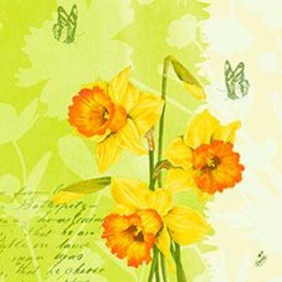 Duni szalvéta Spring flowers 3rtg 40x40cm 4x250db/gyűjtő